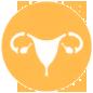 Gynecology